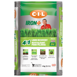 CIL IRON+ 4 in 1 Lawn Recovery 10-2-4 4 kg
