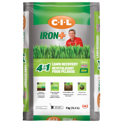 CIL IRON+ 4 in 1 Lawn Recovery 10-2-4 7 kg