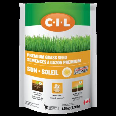 CIL Premium Sun Grass Seed