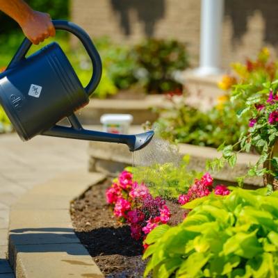 CIL Engrais pour plantes tout usage hydrosoluble 20-20-20