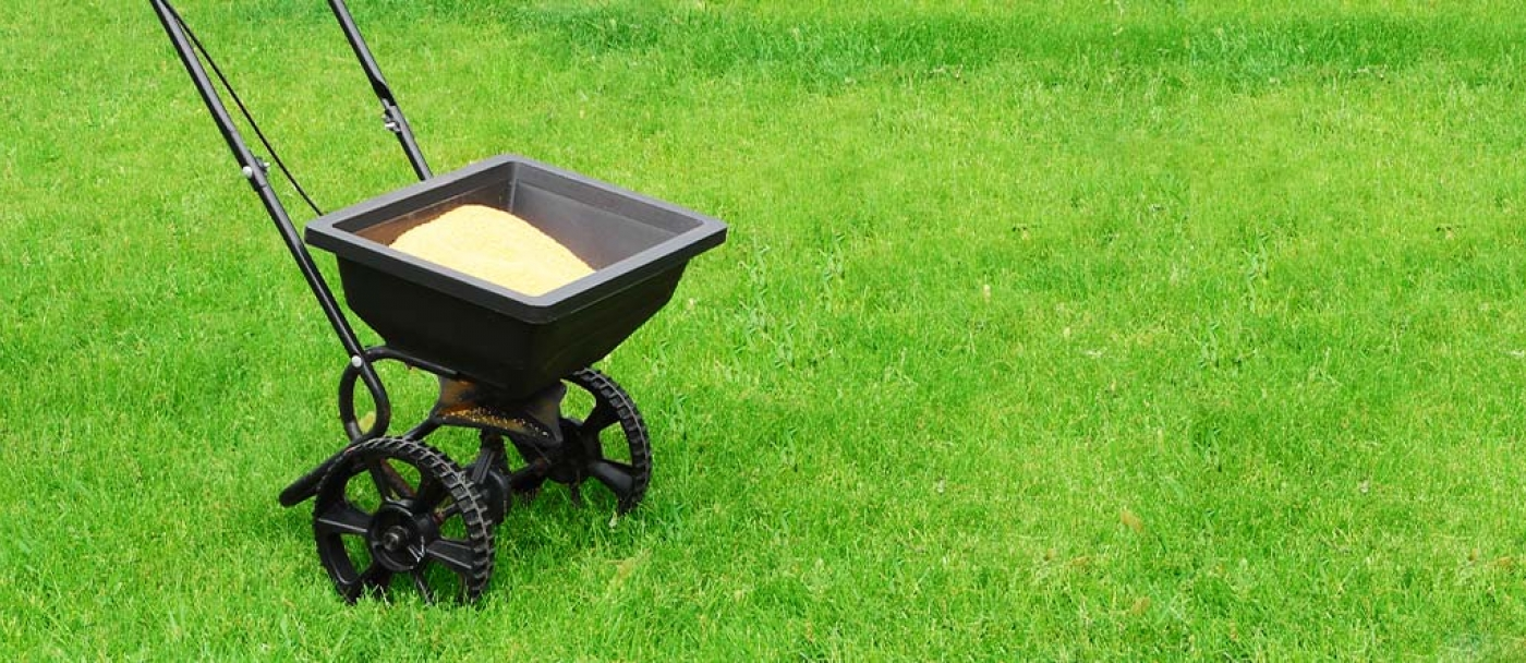 Guide To Feeding Your Lawn C I L Lawn And Garden