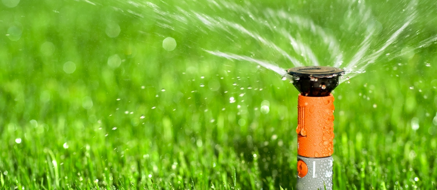 Watering your lawn the right way