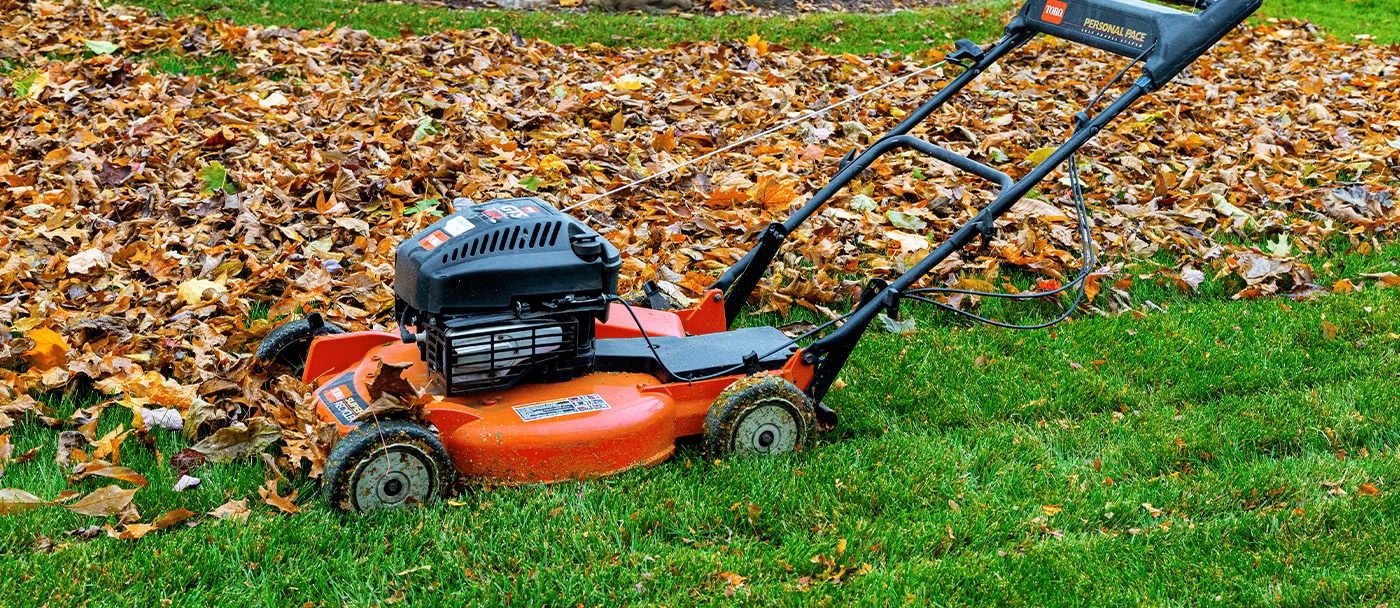 Scrape off the grass and mud stuck under your mower's deck.